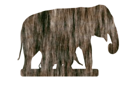 wild background african trunk walk power ivory asian nature wildlife elephant family baby animal big powerful endangered large cartoon decoration zoo cute head africa art mammal safari heavy symbol herbivore environment one skin indian dangerous portrait front ethnic ear huge isolated strong design graphic