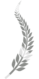 great branch wheat bush laurel celebration leaves day illustrator award arrangement leaf greeting anniversary honor laurels wreath