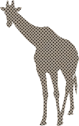 mammal animal big wild face large neck stripes african tall isolated long on head wildlife high giraffe