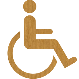 cord wheelchair shield toilet injury barrier person group users disability disabled hospital integration handicap