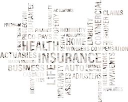 holder automobile car wordle value cash concept life profit money word short medical loss policy office form agent insurance cloud health assets regulations auto home payment vision loan fire different blog graphic