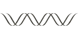 molecule dna helix genetics science