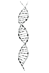 research dna symbol acid spiral helix genetics biology science