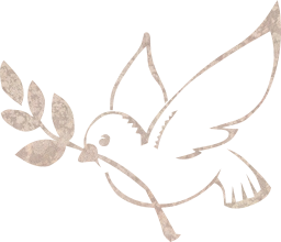 dove branch symbol pigeon olive feathers freedom flying