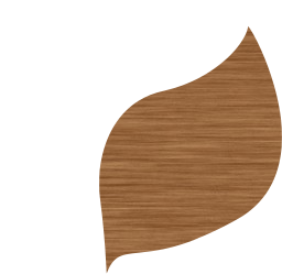 eco stylized leaf bio