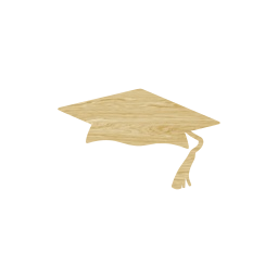 student diploma hat tassel ceremony achievement celebration knowledge academic cap university graduate school education certificate grad high success college degree graduation learning