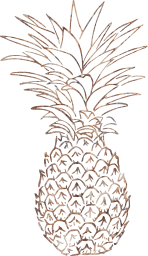 tropic pineapple fruit