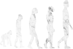 standing charles evolution man walking monkey