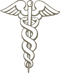 first medical aid assistance emergency worm hospital illness snake medicine 1st healthcare care pharmacy stick health