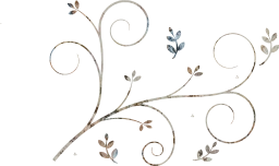 element elegant retro style scroll decorative floral drawing leaf border ornament ornate pattern curl design