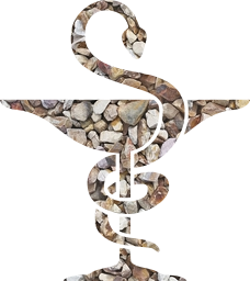 symbol doctor logo snake medicine medic pharmacy hospital caduceus