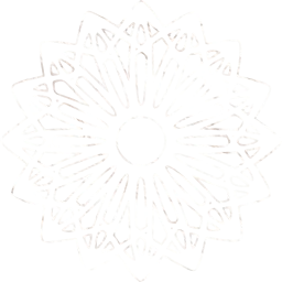 patterns outlines object flowers ornamental petals circles shapes circular floral geometric symmetry round abstract rosette designs