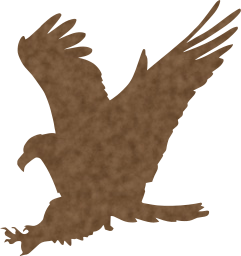 falcon wild mascot usa nature wildlife animal majestic beak sign insignia eagle freedom national bird symbol american emblem claw feather wilderness flight hunting america