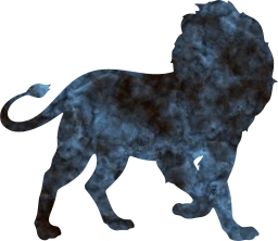 aggressive animal majestic tail leo carnivore pride mane predator wildlife defense lion feline