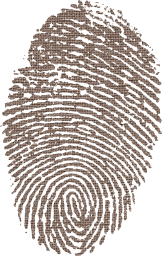 biometric impression security identity flag fingerprinted id mexico government personal passport mexican symbolic individuality investigation sign nation culture finger immigrant country national fingermark ink symbol pride citizen american emblem fingerprint citizenship heritage print sovereign patriotism immigration identification travel privacy patriotic north america