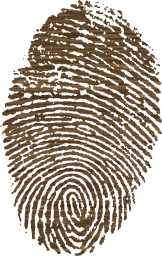 biometric impression security identity flag fingerprinted id government personal passport symbolic individuality investigation sign nation culture finger europe immigrant country national spain fingermark ink symbol pride citizen emblem fingerprint citizenship heritage print sovereign european patriotism immigration identification travel privacy patriotic spanish