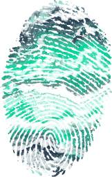 biometric impression security identity flag fingerprinted id government personal passport symbolic individuality investigation sign nation culture finger immigrant country national peru fingermark south ink symbol pride citizen american emblem fingerprint citizenship heritage print sovereign patriotism immigration identification travel privacy patriotic america